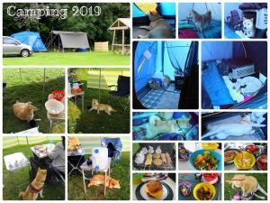 キャンプ with 柴 at スノードニア