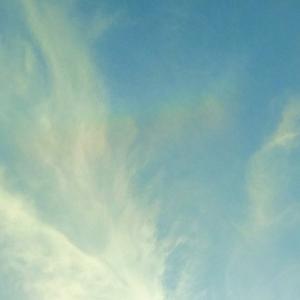 2019初「彩雲」