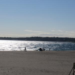 11月の最後の三浦海岸は?