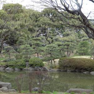(118)「平成最後の春の東京」 公園で桜が満開!