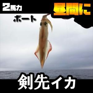 【2馬力ボート】昼間に山陰日本海の剣先イカ(シロイカ)を釣る