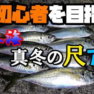 釣行動画:【アジング】真冬の山陰日本海で尺アジを釣る:Mキャロ、シャローフリーク編