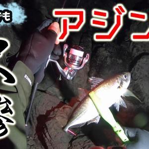動画【アジング】真冬でもジグ単で尺アジを釣るをアップしました