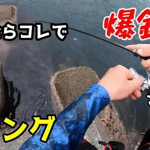 【ジグ単アジング】簡単に釣れるパターンをみつけたら爆釣した!