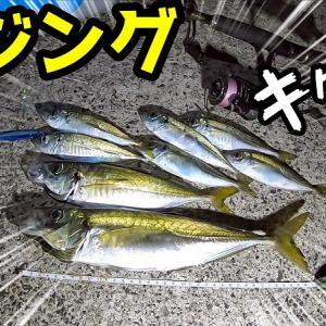 【アジング】ジグ単で尺アジ!ジグサビキでダブルヒットの連続