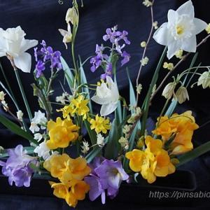 花いっぱいプロジェクトⅡ