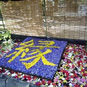 5ヵ月ぶりの京都