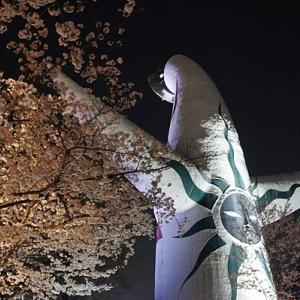万博記念公園 桜のライトアップ