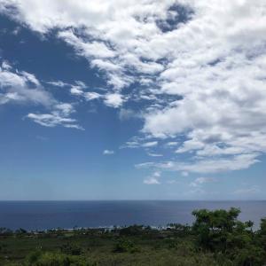 clubhouse【美姿勢ルーム】 6月はハワイ島大特集! 14時~開催です♡