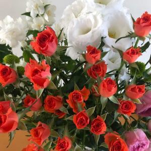お花のちから
