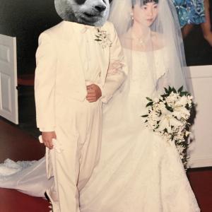 【2019年9月23日 今日は20回目の結婚記念日】