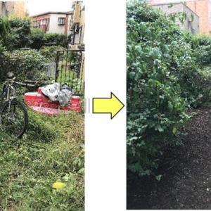 定期的にご依頼頂いていますマンションお庭の草むしり作業