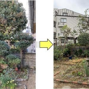 個人邸お庭植木整理と剪定作業ご依頼
