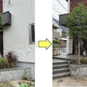 玄関脇植栽の剪定作業