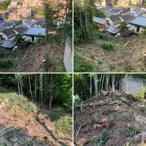 個人邸竹や雑木伐採作業3日目終了