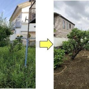 年間3回剪定草刈り作業をさせて頂いているお庭の管理