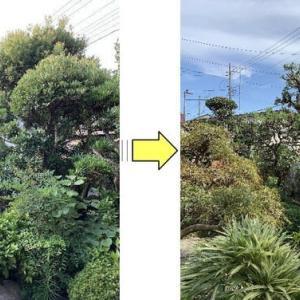 伸び放題となってしまったお庭の剪定作業
