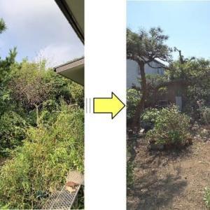 庭木や草や笹が伸び放題となってしまったお庭の手入れ作業