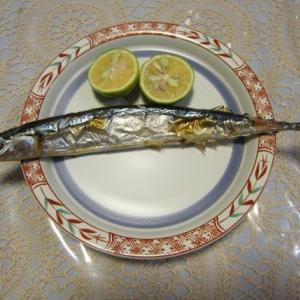 遅い初秋刀魚