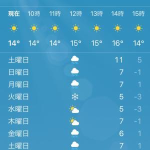 今季初の雪マークと週末の台風