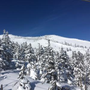 いろいろなスキー場を巡った3DAYS