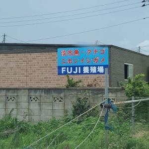 室内釣り堀 Fuji養殖場(四街道)
