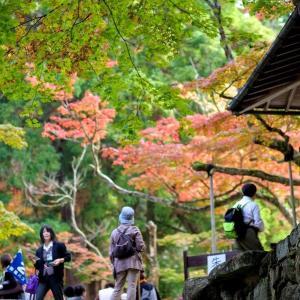 2009年初秋の西明寺