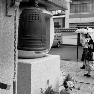 雨の四天王寺