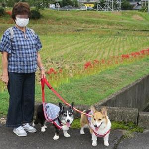 秋の気配の奈良井宿散策