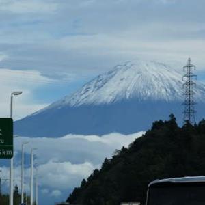 ほうとうと湧水と富士宮焼きそば