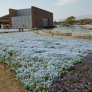 浜名湖ガーデンパークで撮影会