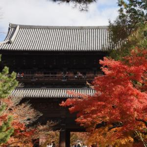 紅葉 南禅寺(京都)