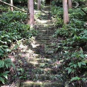 【モトブログ】鴨川山中散策