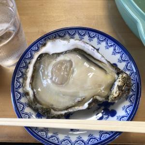 【モトブログ】XMAXで行く岩牡蠣ツー