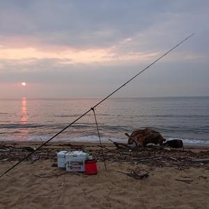 8月21日 伊勢湾でキス釣り♪