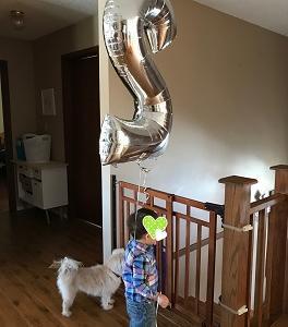 『ゼエゼエ(汗)母ちゃん頑張ったぞー』2歳のお誕生日*記念写真