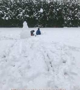 『カナダ在住42歳主婦』○○の恐怖を克服できず(汗)+大雪よ