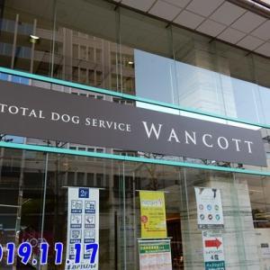 犬と暮らすクリエーター展in横浜に行ってきました