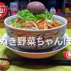 麺ぬき野菜ちゃんぽん