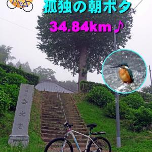 孤独の朝ポタ・・・34.84キロ(カワセミに三度出会う)