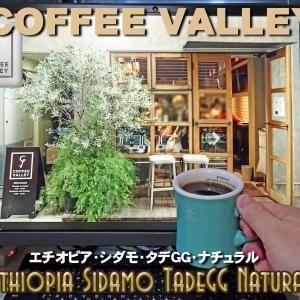 コーヒーバレーの「エチオピア・シダモ・タデGG」