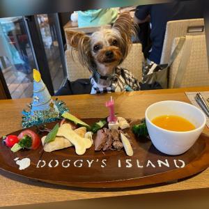 Birthday Trip その⑤ Birthday Dinner