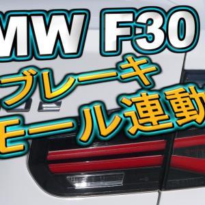 BMWブレーキ・スモール連動!!動画ですわ!!(・`▽´・ ;)!!