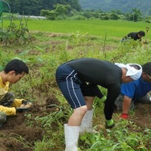 日常生活支援サポートハウスの畑活動2