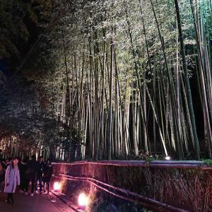 嵯峨嵐山の花灯路