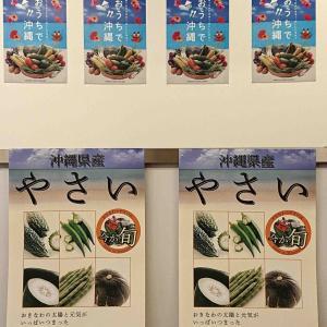 真冬に沖縄野菜料理