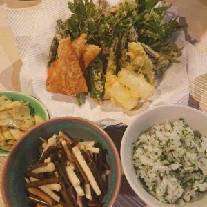 山菜づくし春の味