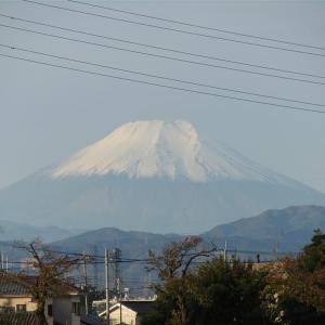 昨日の富士山(shot in サイータマ)