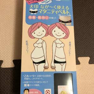 妊娠中の購入品