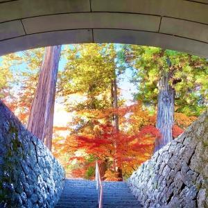 トンネルを抜けると!(長野県千曲市/龍洞院架道橋)